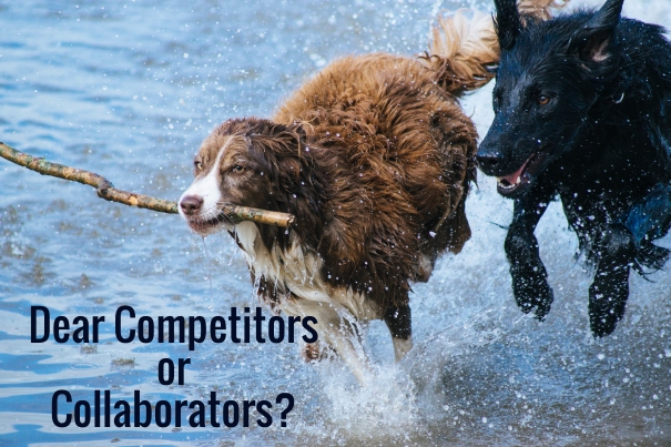 Dear Competitors or Collaborators?