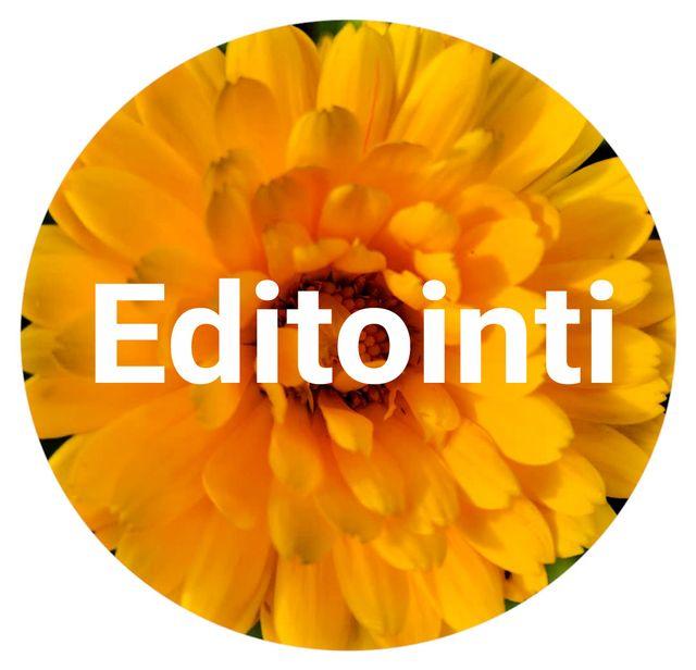 Editointi